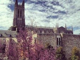 The Odd Sounds of Outrage, Violence, and Silence at #Duke