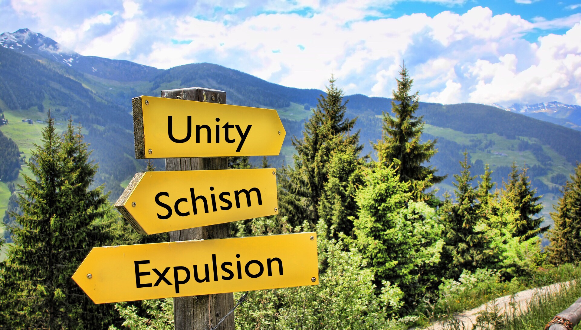 Schism, Expulsion, And Diversity: #UMC Unityu0027s Varied Definitions
